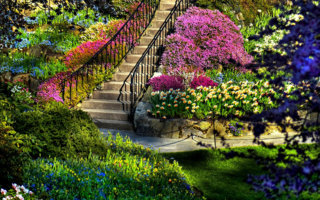 Images-of-a-beautiful-garden-images-6